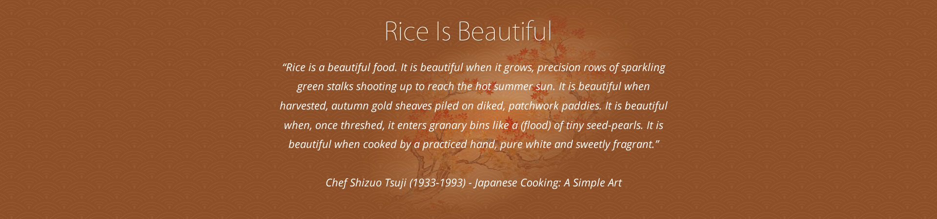Rice is Beautiful